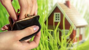 Налоговые изменения для владельцев земельных участков. Как сэкономить в 2019 году